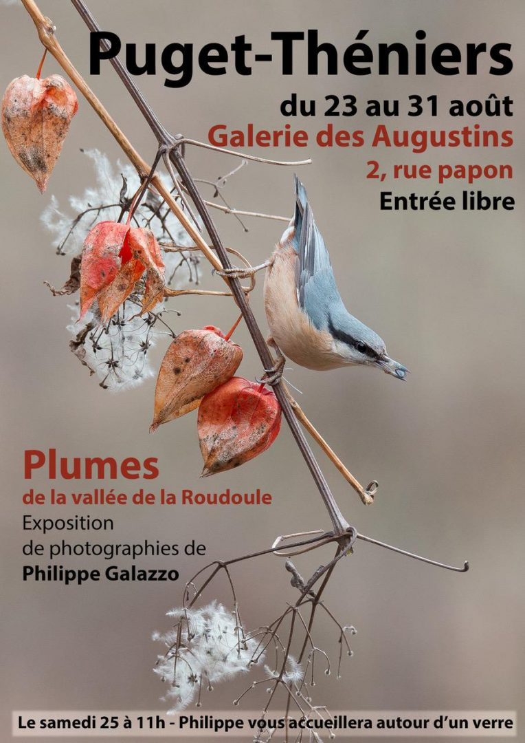 Exposition Philippe GALAZZO Puget Théniers